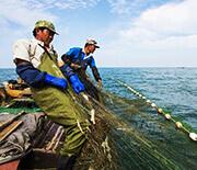 长岛春和长渔家乐