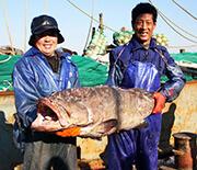 长岛佳逸渔家