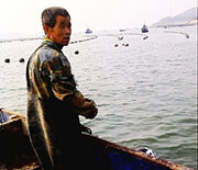 长岛温馨观海渔家
