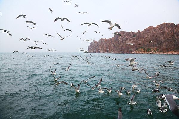 八仙渡海,蓬莱仙境--如仙境般的烟台长岛