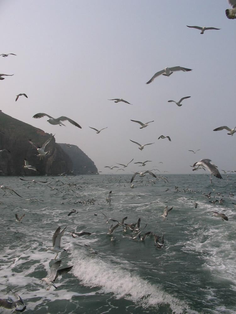 烟台 蓬莱 长岛游_长岛旅游攻略_长岛渔家乐点评网