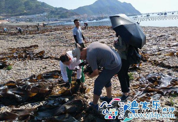 央视深入大钦岛探寻海带海米渔家《味道》(图)